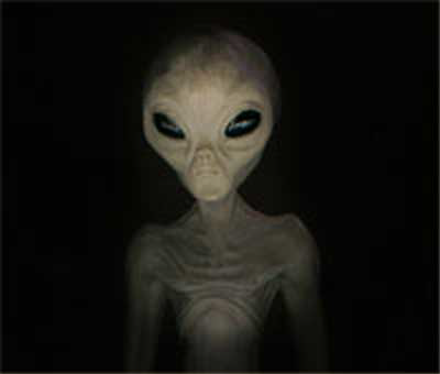 """Grey"" Alien Species"